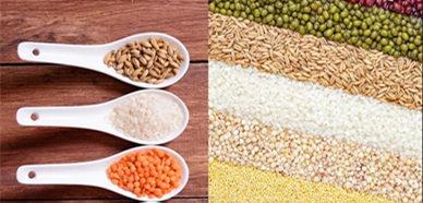 Automatic microwave baking machine for five-grain nutrition powder